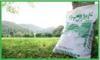 ハイブリッド緑化用イメージ